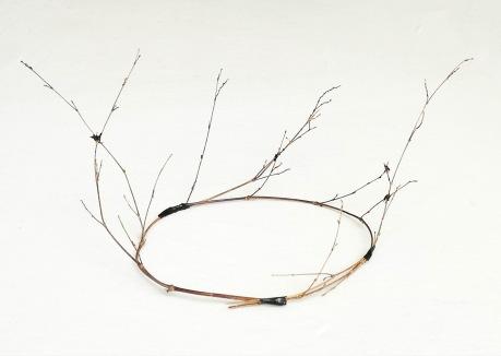lacustrian crown